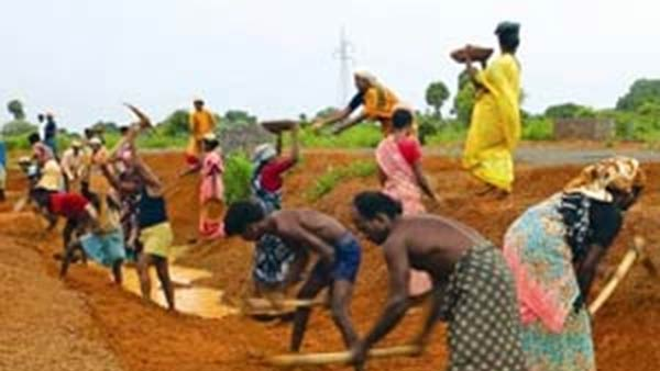 MGNREGA work demand has declined in the month of july 2020