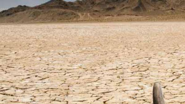 என்னவெல்லாம் நடக்குமோ.. அமெரிக்காவில் பதிவான வெப்பநிலை.. உலகிலேயே இதுதான் மிக அதிகம்.. செம ஹீட்!