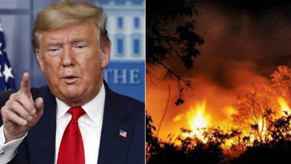 Donald Trumps new theory that US Wildfires Started Because of trees Explode