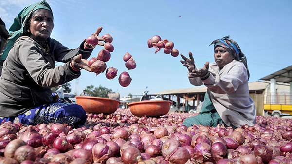 Onions sold at Trichy Pasumai pannai shops - Public disappointment