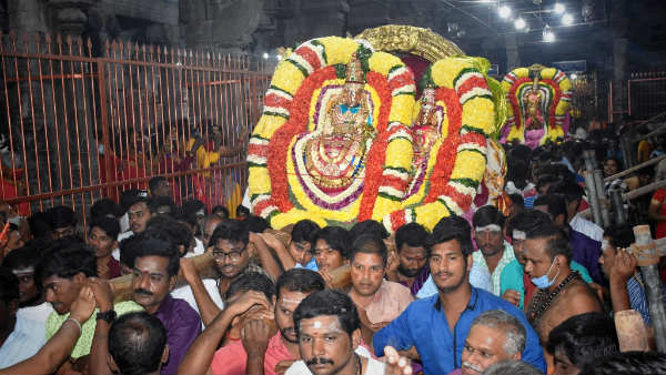 Thiruvannamalai Thiruvodal Festival: Annamalaiyar who gave darshan to Nandi - a view to the sun