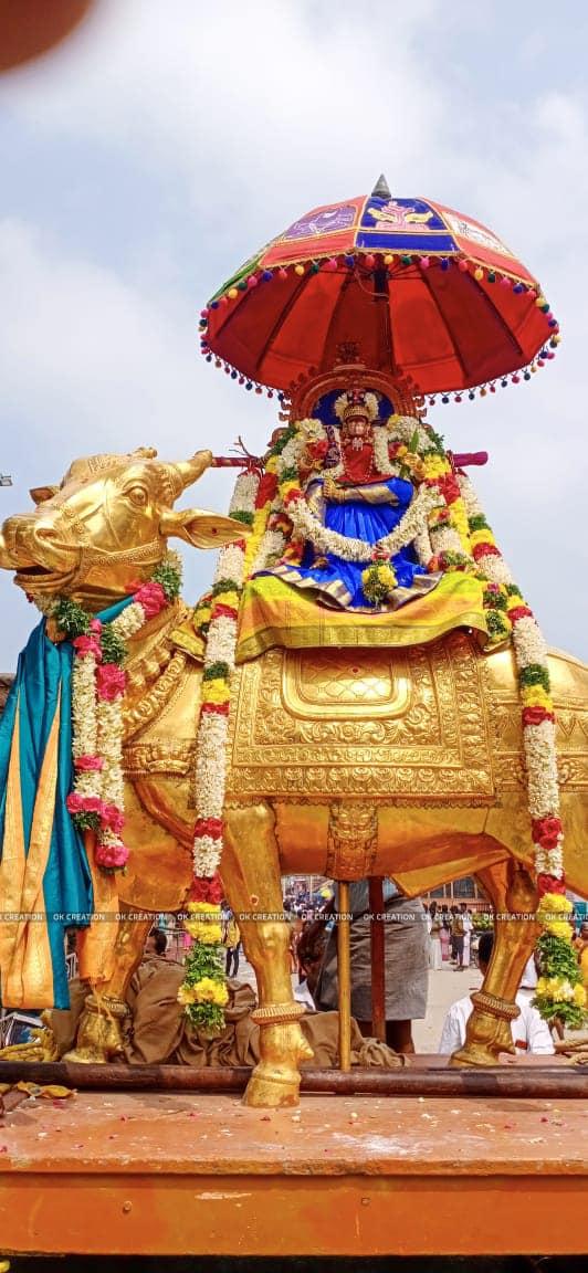 Thai Amavasai Teerthavari in Rameswaram temple