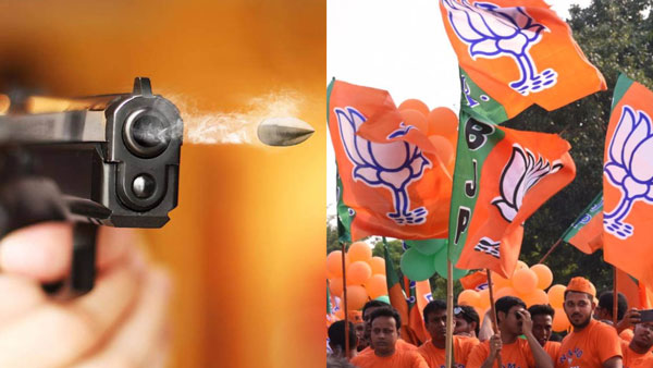 Uttar Pradesh BJP MP son was shot by mysterious persons