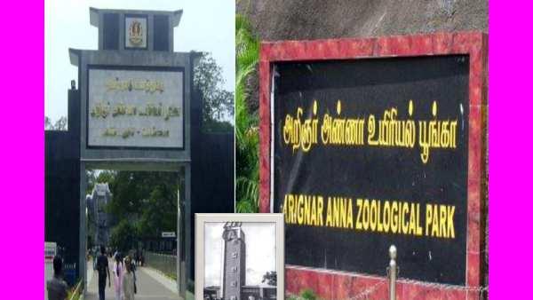 Kebun Binatang Chennai Vandalur dibuka hari ini setelah 4 bulan..!
