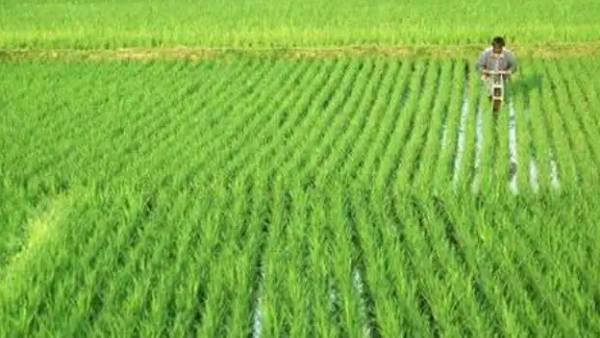 தமிழ்நாட்டில் முதல்முறையாக வேளாண் துறைக்கு தனி பட்ஜெட்.. ஆகஸ்ட் 14ஆம் தேதி தாக்கலாகிறது
