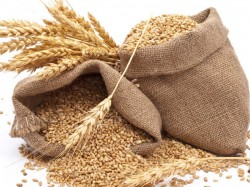 Customs Duty On Wheat Increased