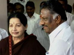 Assembly Election Jaya Likely Contest Bodinayakkanur