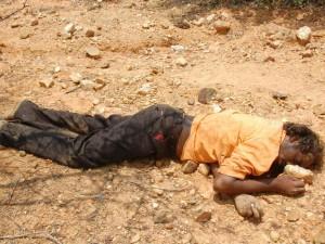 Cbi Should Probe Massacre Tamils