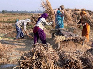 Million Rural Areas Live On Rs 33 Per Day