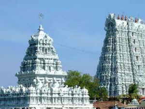 Suchindram Temple Painting Rejuvenate Works Stats Tomorrow