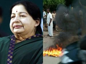 Jayalalithaa Appeals Admk Cadres Not Burn Effigies Vijayakan