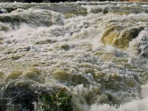 Karnataka Will Build Dam Across Cauvery River Says Minister