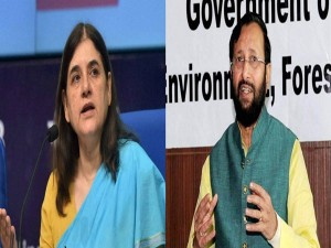 Maneka Slams Javadekar Over Killing Animals