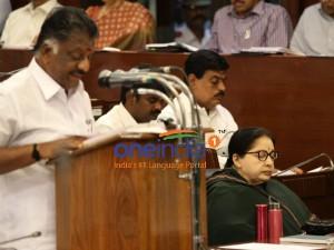 Rs 183 24 Crore Local Body Election Tamilnadu Budget