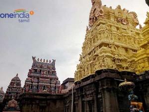 Tiruvallikeni Parthasarathi Temple Puratasi Sani Dharisanam