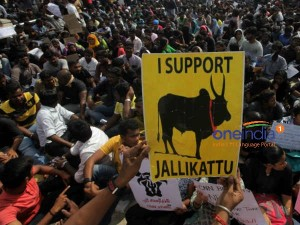 France Based Tamils Hold Protest Paris On Sunday