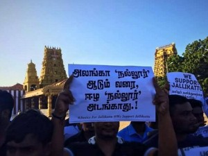 Eelam Tamils Support Tn Protest On Jallikattu
