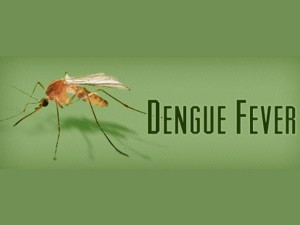 Dengue Fever Spreading Nellai