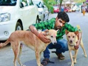Dogs Help Catch Stalker Who Stabbed Woman T Nagar