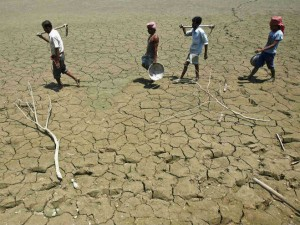 Central Committee Has Recommended The Federal Government Drought