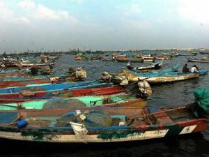 38 Fishermen Released Sri Lanka