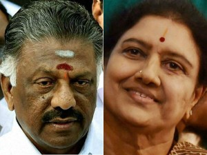 Both The Aiadmk Team Have Apply New Symbol