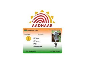 Aadhaar Like Card Cows Centre Submits Report Sc