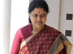 Followed Thambidurai Dinakaran 5 Mlas Met Sasikala
