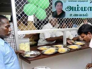Amma Canteen S Business Dull Chennai
