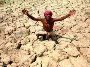 Farmers Committed Suicide India Last Year Says Minis