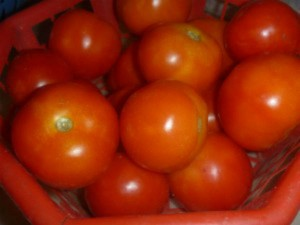 Tomato At Rs 120 Prices Soar