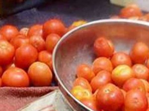 Tomato Price Less Due Productivity