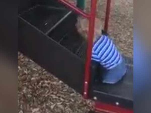 Nothing Is Too Hard Disable Kid S Playing Slide Video Going Viral