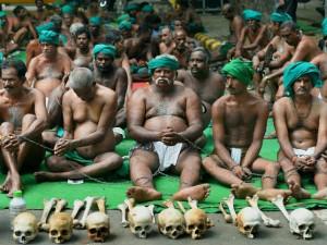 National Green Tribunal Bans Protest Tn Farmers