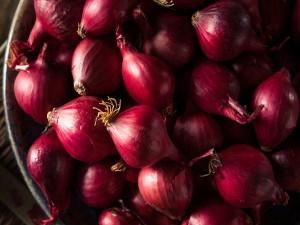 Onion Price Goes High Market