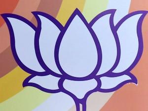 Bjp Support No Need Admk Rk Nagar Poll Mp Maithreyan