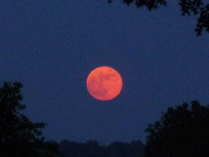Sex During The Super Blue Blood Moon Affect Your Life
