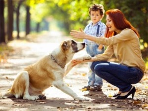 A Story Is Telling That Pets Are Taking Care Us Than Our Children