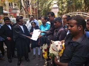 Tpdk Activists Bring Dog Goat Coimbatore Court Seeking Divorce
