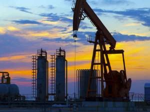 Setting Up Petroleum Oil Zone Five Places Tamil Nadu Dharmendra Pradhan