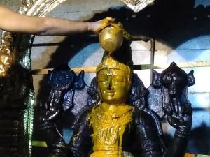 Purattasi Ekadesi Tiruvonam Abishekam At Sri Dhanvantri Peedam