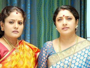 Audience Are Not Much Interest Priyamanaval Serial
