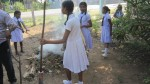 Sri Lanka School Kids Get Affected Dengue
