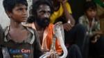 Tragic Tale Nursing Mother S Snakebite Shocks India
