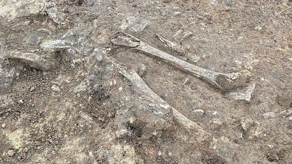 ரோமப் பேரரசு வரலாற்று காலம்: இங்கிலாந்தில் கிடைத்த இரும்புக் கால எலும்புக் கூடுகள்